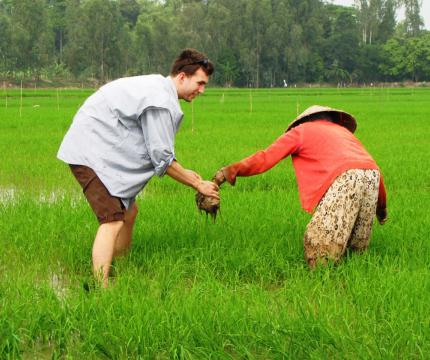 WWU student Michael Dunning learns how to transplant and fill in the gaps of a rice field, Vietnam, 2014