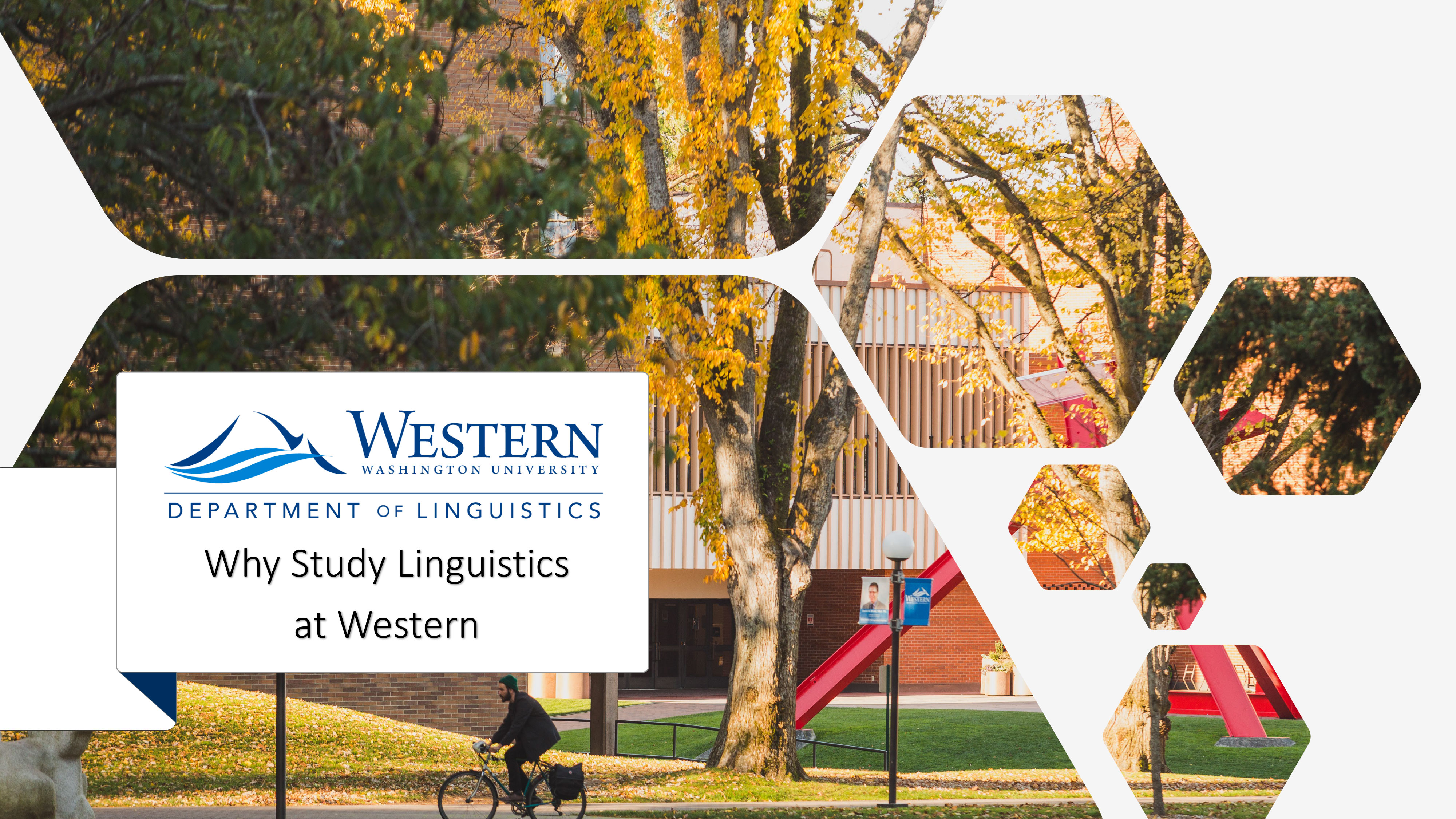 """Link to PDF presentation titled """"Why Study Linguistics at Western"""""""